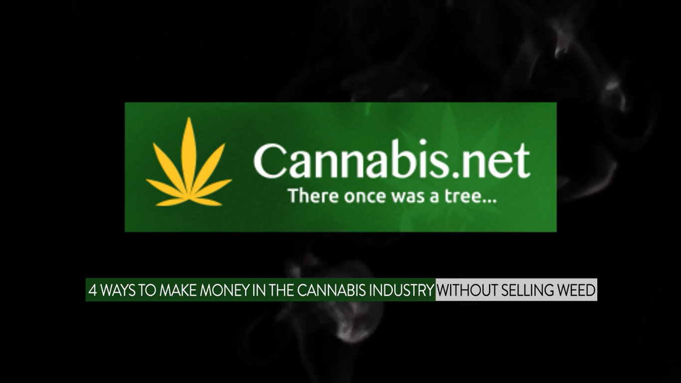 4 Ways to Make Money in the Cannabis Industry without Selling Weed